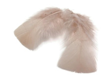 1 Pack - Nude Dyed Turkey T-Base triangle Body Plumage Feathers 0.50 Oz.