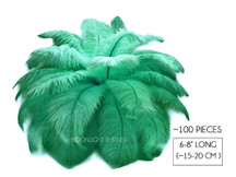 "100 Pieces - 6-8"" Aqua Green Wholesale Ostrich Drabs Feathers (Bulk)"