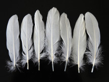 1 Pack - White Goose Satinettes Loose Feathers - 0.3 Oz