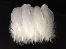 1 Pack - White Goose Nagoire Loose Feather - 0.25 Oz.