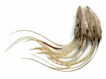 1 Dozen - Medium Natural Unique Cream Rooster Saddle Whiting Hair Extension Feathers