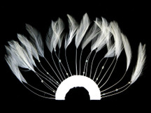 1 Piece - White Half Beaded Pinwheel Stripped Rooster Hackle Feather Pads
