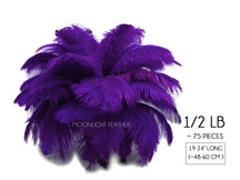 "1/2 Lb - 19-24"" Purple Ostrich Extra Long Drab Wholesale Feathers (Bulk)"