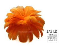 "1/2 Lb - 19-24"" Orange Ostrich Extra Long Drab Wholesale Feathers (Bulk)"