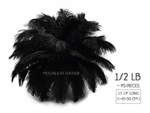 "1/2 Lb - 17-19"" Black Ostrich Large Drab Wholesale Feathers (Bulk)"