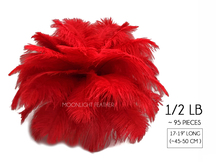 "1/2 Lb - 17-19"" Red Ostrich Large Drab Wholesale Feathers (Bulk)"