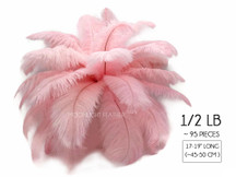 "1/2 Lb - 17-19"" Baby Pink Ostrich Large Drab Wholesale Feathers (Bulk)"