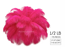 "1/2 Lb - 17-19"" Hot Pink Ostrich Large Drab Wholesale Feathers (Bulk)"