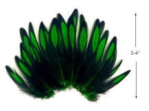 1 Dozen - Kelly Green Whiting Farms BLW Laced Hen Cape Loose Feathers