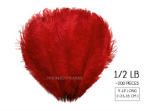 "1/2 Lb. - 9-13"" Red Dyed Ostrich Body Drab Wholesale Feathers (Bulk)"