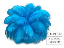 "100 Pieces - 8-10"" Turquoise Blue Ostrich Dyed Drab Body Wholesale Feathers (Bulk)"