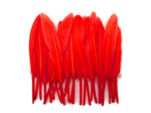1 Pack - Red Dyed Duck Cochettes Loose Wing Quill Feather 0.30 Oz.