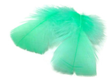 1 Pack - Aqua Green Dyed Turkey T-Base triangle Body Plumage Feathers 0.50 Oz.
