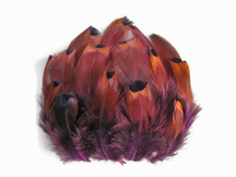 1 Pack - Purple Ringneck Pheasant Plumage Loose Feathers 0.07 Oz
