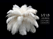 "1/2 Lb - 14-17"" Off White Ostrich Large Drab Wholesale Feathers (Bulk)"