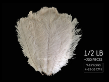"1/2 Lb. - 9-13"" Off White Bleached Ostrich Body Drab Wholesale Feathers (Bulk)"