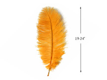 "10 Pieces - 19- 24"" Gold Ostrich Dyed Drabs Body Feathers"