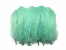 1 Pack - Aqua Blue Goose Nagoire Loose Feather - 0.25 Oz