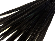 "50 Pieces - 20-22"" Black Bleached & Dyed Long Ringneck Pheasant Tail Wholesale Feathers (Bulk)"