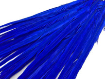 "50 Pieces - 20-22"" Midnight Blue Long Ringneck Pheasant Tail Wholesale Feathers (Bulk)"