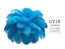 "1/2 Lb - 14-17"" Turquoise Ostrich Large Drab Wholesale Feathers (Bulk)"