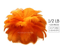 "1/2 Lb - 14-17"" Orange Ostrich Large Drab Wholesale Feathers (Bulk)"