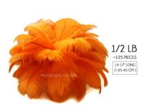 """1/2 Lb - 14-17"""" Orange Ostrich Large Drab Wholesale Feathers (Bulk)"""