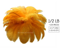 "1/2 Lb - 14-17"" Golden Yellow Ostrich Large Drab Wholesale Feathers (Bulk)"
