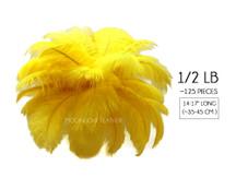 "1/2 Lb - 14-17"" Yellow Ostrich Large Drab Wholesale Feathers (Bulk)"