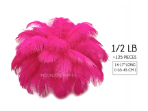"1/2 Lb - 14-17"" Hot Pink Ostrich Drab Wholesale Feathers (Bulk)"