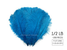 "1/2 Lb. - 9-13"" Turquoise Blue Dyed Ostrich Body Drab Wholesale Feathers (Bulk)"