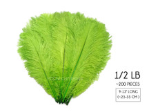 "1/2 Lb - 9-13"" Lime Green Ostrich Drab Wholesale Feathers (Bulk)"