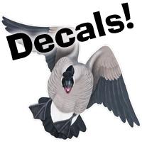 decals-link.jpg