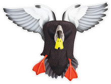 Black Duck Drake #1 Decal