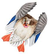 Mallard Hen #3 PVC Garage Duck