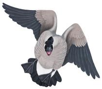 Canada Goose #1 PVC Garage Duck