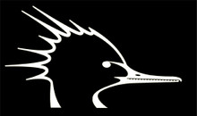 Mergansers Unlimited Decal
