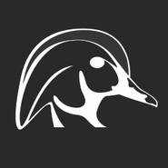 Wood Ducks Unlimited Decal