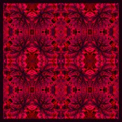 Debbie Millington Rhubarb Square Silk Scarf