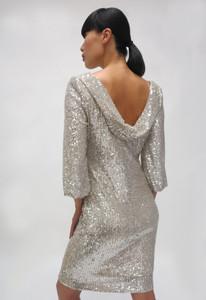 Fee G 741997 Silver Dress