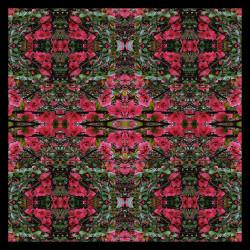 Debbie Millington Red Print Quince Scarf