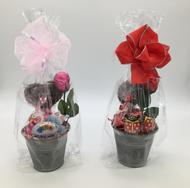 """*Mother's Day Garden Planter Basket*"""