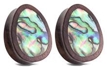 Pair Abalone Shell Teardrop Organic Wood Plugs Ear Gauges 0g 00g 1/2 9/16 5/8