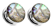 Pair Screw Fit Abalone Shell Plugs Steel ear gauges 2g 0g 00g 1/2 3/4 inch