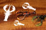 Cohen's Crayfish Creature