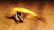 Complete Golden Pheasant Crest