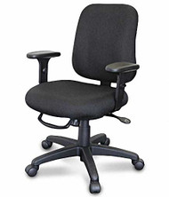 Task Chair, Ergo Controls