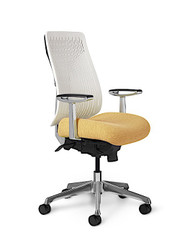 Active Chair, High Back