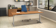 "Rectangular Crank Adjustable Desk 23"" x 41"""