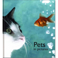 Pets In Pictures